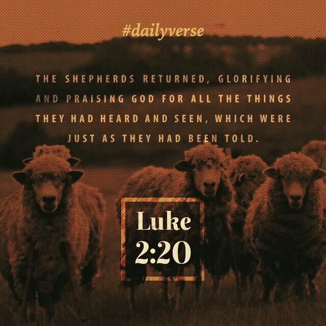 Luke 2:20
