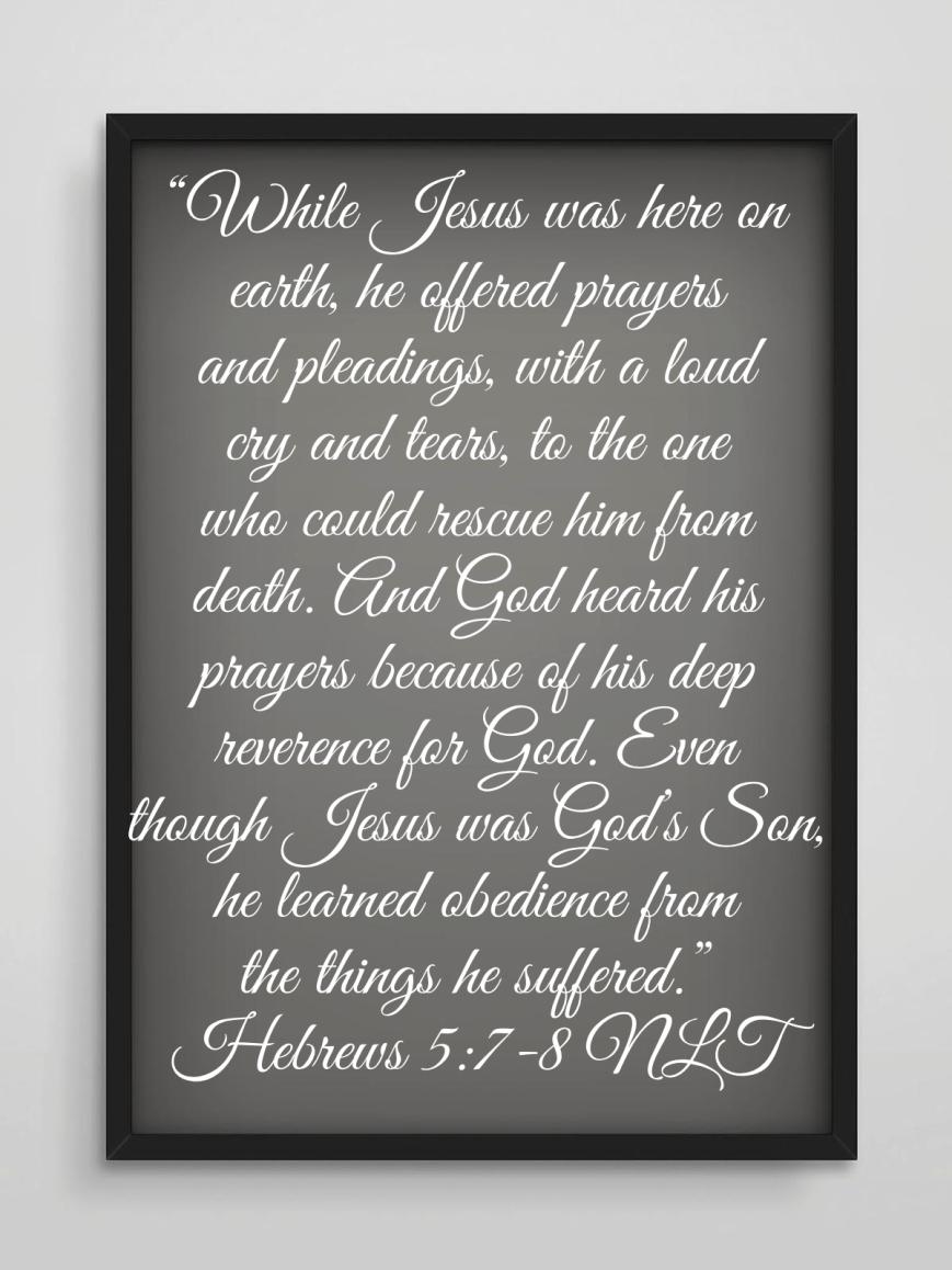 Hebrews 5:7-8